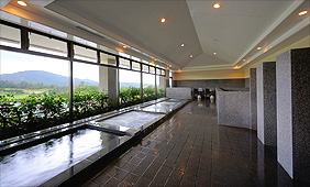 Spa Baths and Saunas Photo